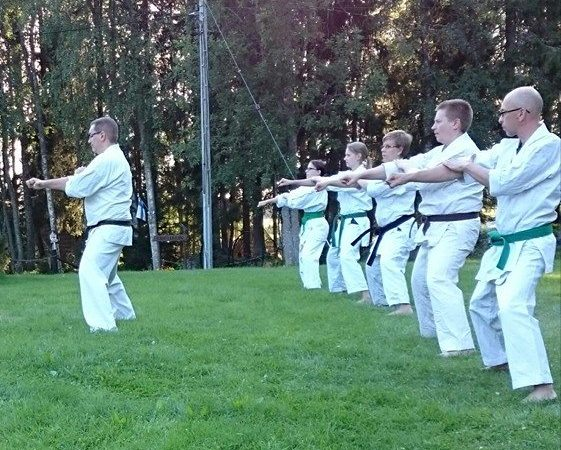 karategrupp hemsida