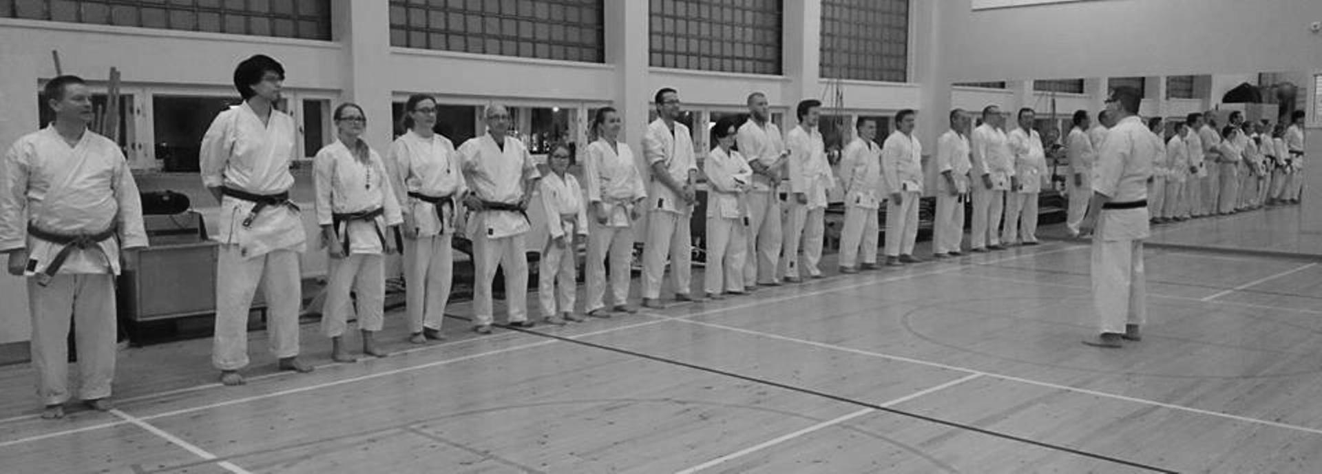 karategrupp-ny